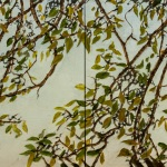 Apple-branches-and-leaves-16x32