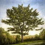 Pine-Tree-for-Penny-and-Stephen-48-x-48