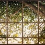 The Window, 5x7