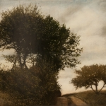 fix-Trees & rd-Kos 09