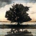 Tree with far horizon